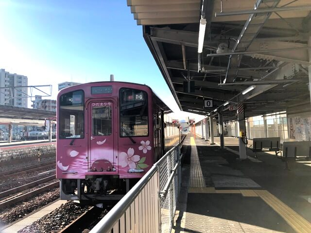 NT3002 ひだまり号「桜のピンク」